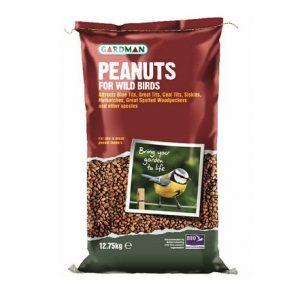 Seeds & Peanuts